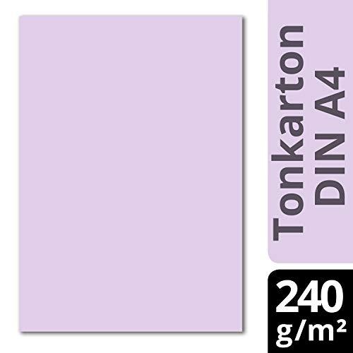 Glüxx Agent 50 Blatt Tonkarton DIN A4 - Flieder - 240 g/m² Dicker Bastelkarton - 21,0 x 29,7 cm Pappe zum basteln für Fotoalbum Menükarte Bedruckbar DIY kreativ Sein