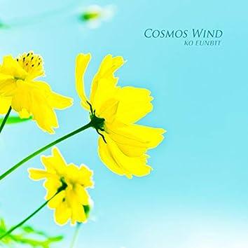 Cosmos Wind