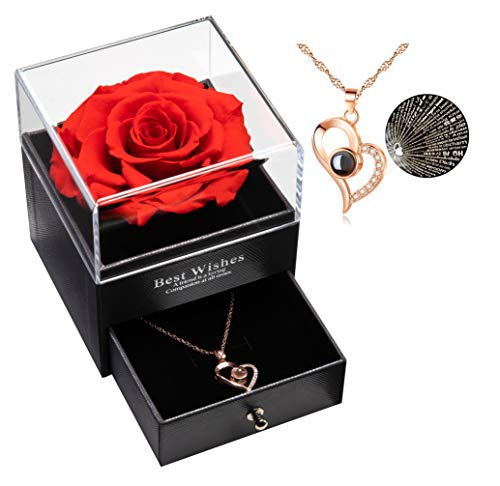 Eternal Real Rose with I Love You Necklace 100 Languages Jewelry Gift Box, Real Rose for Valentine's Day Mother's Day Wedding Anniversary Birthday Gift for Her (Goldton Special Heart Necklace)