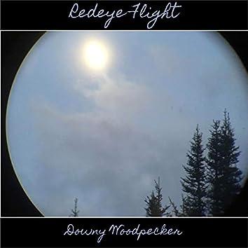 Redeye Flight (Demos)