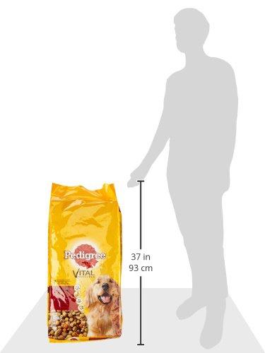 Pedigree Adult Hundefutter Rind und Gemüse, 1 Beutel (1 x 15 kg) - 3