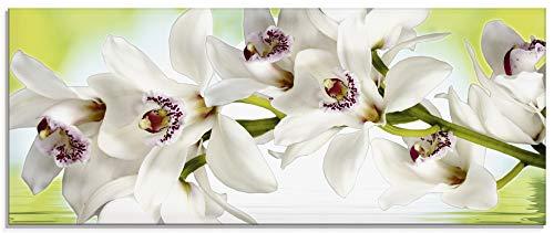 Artland Glasbilder Wandbild Glas Bild einteilig 125x50 cm Querformat Natur Botanik Blumen Blüten Orchideen Zen Wellness Spa S6LI