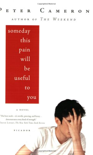 Someday This Pain Will Be Useful to You [Lingua inglese]