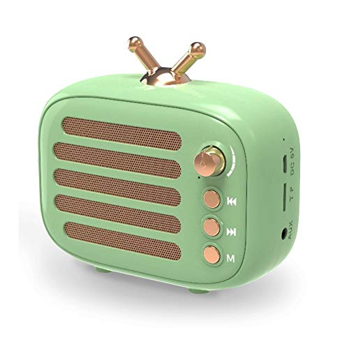 Wireless Stereo Retro Speaker, Dosmix Portable Bluetooth Vintage Speaker with Built-in Mic, 12 Hours...