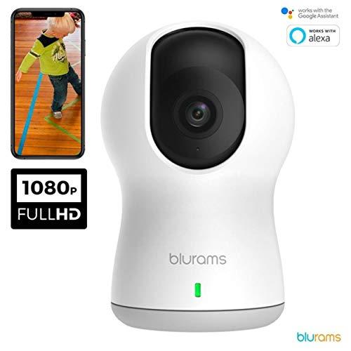 Blurams Dome Pro 1080p FHD Cámara de Vigilancia en Domo para el Hogar-WiFi Mic.Alt Detección Inteligente Personas/Animales/Sonidos Alertas Tiempo Real Visión Panorámica - Modo Crucero (iOS & Android)
