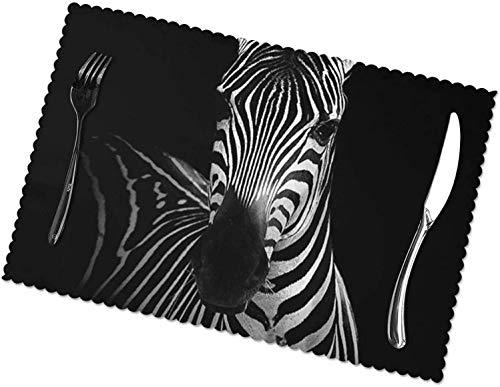 Zebra Tischsets, 4er Set, leicht zu reinigen, hitzebeständig, schmutzabweisend Tischsets aus Polyestermaterial