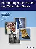 Erkrankungen der Klauen und Zehen des Rindes - Andrea Fiedler