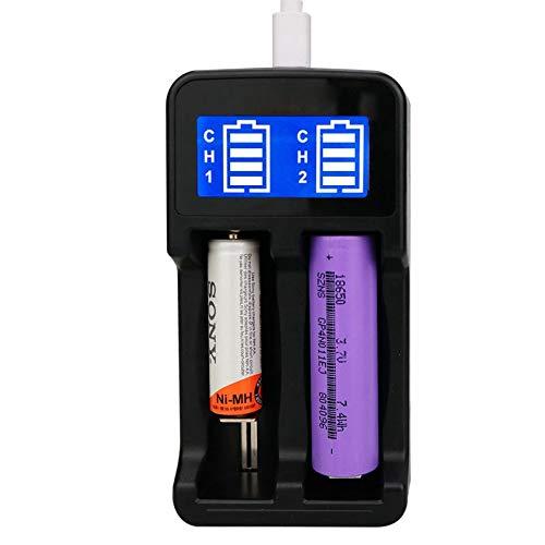 Batería ChargerYS-2 18650 Inteligente LCD Dual con Micro USB Hizo Salir for 18490/18350/17670/17500/16340 RCR123 / 14500/10440 / A/AA/AAA, Liqingshangmao