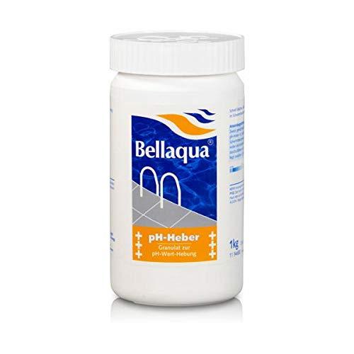 Elecsa bayrol granulés pour augmentation du pH 1 kg