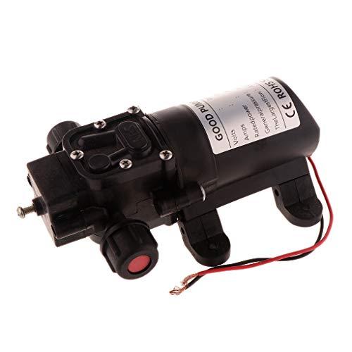 Fenteer 3.5L/min Elektrische Wasserpumpe Bootpumpe Hochdruckmembran Pumpe Hochdruck - 48V Doppelschlauch