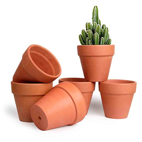 T4U 10.5CM Terracotta Clay Pots Pack of 6 - Small Craft Nursery Plant Pot Water Permeable Succulent Cactus Pottery Planter DIY Home Office Desktop Windowsill Ornament Decoration Wedding