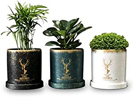 Gdamal Flower Pots Indoor with Saucer and Drainage Holes, 4.3 Inch Ceramic Plant Pots for Succulents, Herbs, Cactus,...