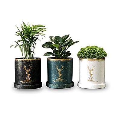 Succulent Planter Pots, 4.3 Inch Ceramic Flower...