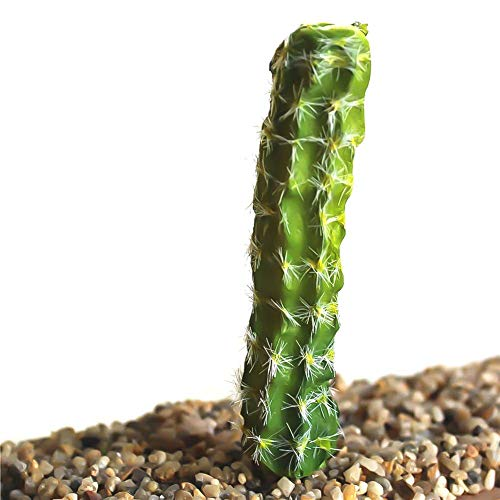 Mini Office Depot Plastik Künstlich Miniatur Sukkulenten Pflanze Kaktus Echeveria Blumen Wohndeko(H03)