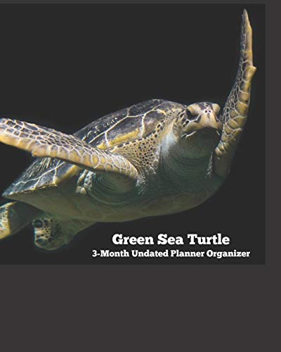 Green Sea Turtle Diet Food