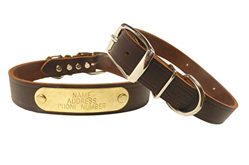 Warner Brand Cumberland Leather Dog Collar + FREE Engraved Brass ID tag...