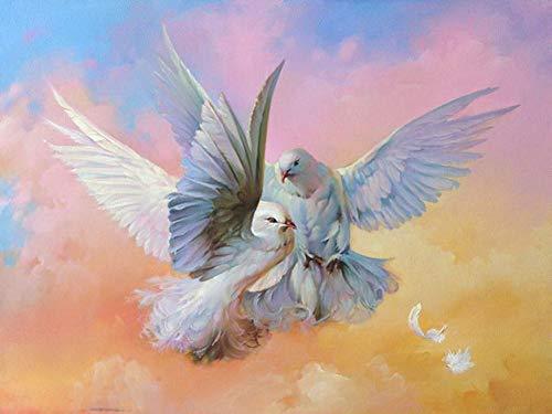 hars ronde doe-het-zelf 5D diamant schilderij kruissteek Kits volledige diamant borduurwerk schilderijen twee duiven ambacht 30x40cm