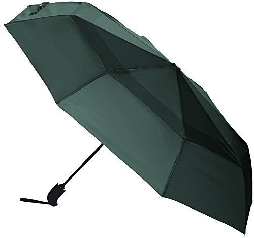 Amazon Basics Automatic Open Travel Umbrella with Wind Vent - Green