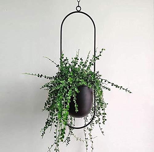 Cratone Hängender Dekorationstopf Metall Schwarzer Bolo Blumenampel Decke hängender Übertopf für Zimmerpflanzen, Sukkulenten, Luftpflanzen, Kakteen
