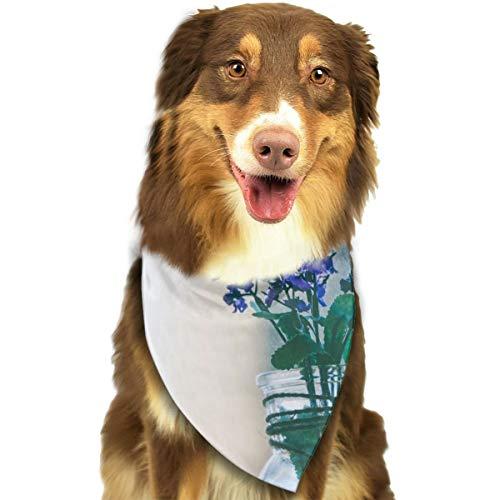 N/B Bbgsw paarse bloemen in helder glas Vaas aangepaste hond hoofddoek felgekleurde sjaals schattige driehoek slabbetjes accessoires voor huisdier honden