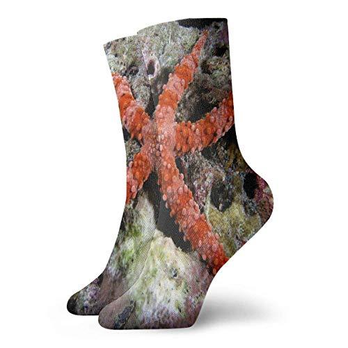 Femmes Hommes Crew Socks Sea Star on Pinterest Athletic Novelty Casual Tube Socks 30CM