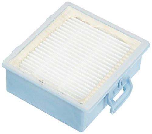 LeaBen - Filtro HEPA Bosch BSG 6, BSGL 30, BSGL 40#1413
