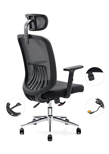 Cedric Office Chair, Breathable Mesh Computer Chair with Ergonomic Lumbar Support, Black Swivel Desk Chair with Adjustable Armrest, Headrest, Soft Cushion Seat