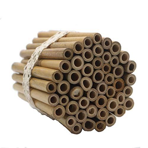 Super Idee 50 Stück 10cm Länge Bambusröhrchen zum selber Bauen Wiederverwendbaren Basteln aus Bambus für Insektenhaus Wildbienenhotel Wildbienenhaus Bienenhotel Nisthilfen