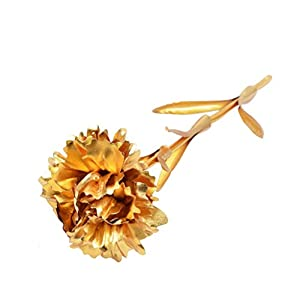 Gold Foil Carnation Gold Plated Long Stem Artificial Carnation Flower Romantic for Mothers Day, Valentine's Day, Christmas, Birthday, Any Anniversary, Home Crafts, Party, Wedding (D)