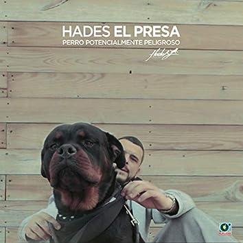 Perro Potencialmente Peligroso (Jimcredible Remix)