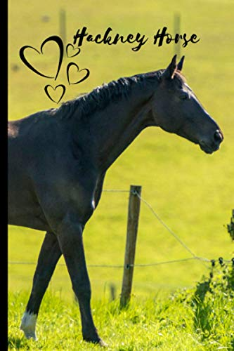 Hackney Horse Notebook For Horse Lovers: Composition Notebook 6x9' Blank Lined Journal