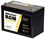 Carmanah CMH-AGM-100 100 Amp AGM Deep Cycle Rechargeable Replacement Battery for PV Solar