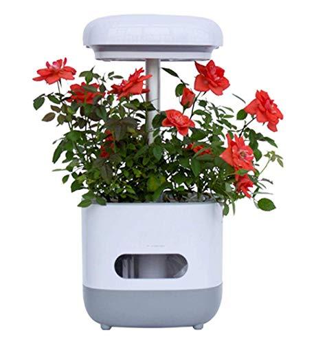 Dpliu Gute Qualität LED Wachstum Lichtanlage Wachsen Licht Pflanze Licht LED Pflanze Licht Pflanze Fill Light Wachstum Licht Pflanze Lichtständer (ohne Anlagen)