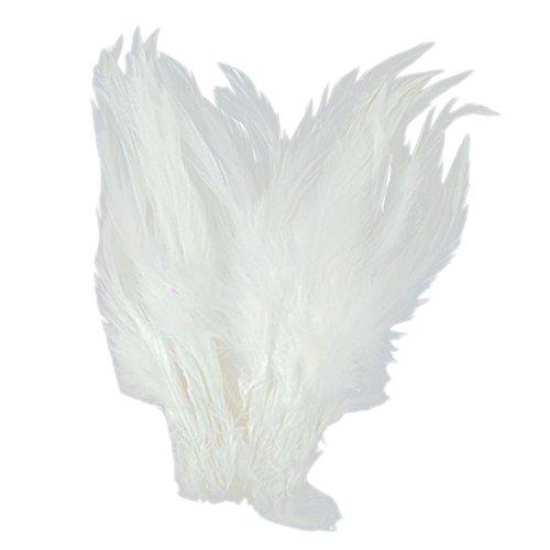 Plumes de Coq Teintes 3-4 pouces - Blanc