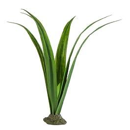 Exo Terra Plant