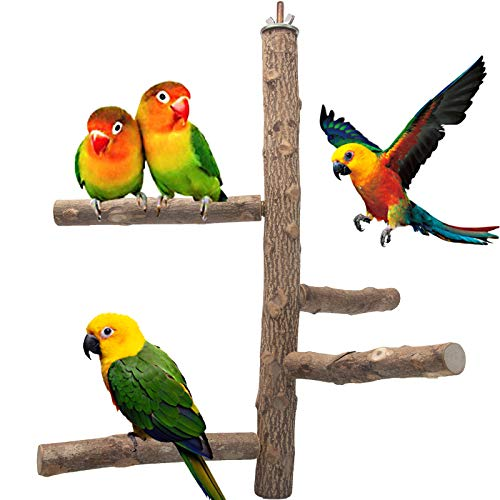 Bird Perch Natural Wood Stand Toy, Parrot Perch Branch for 3-4pcs Small Medium Birds, Birdcage Toy Climbing Stairs for Parakeets Cockatiels, Conures, Macaws, Parrots, Love Birds, Finches