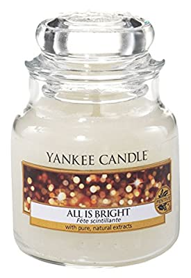 Yankee Candle Large 2-Wick Tumbler Candle, Cascading Snowberry