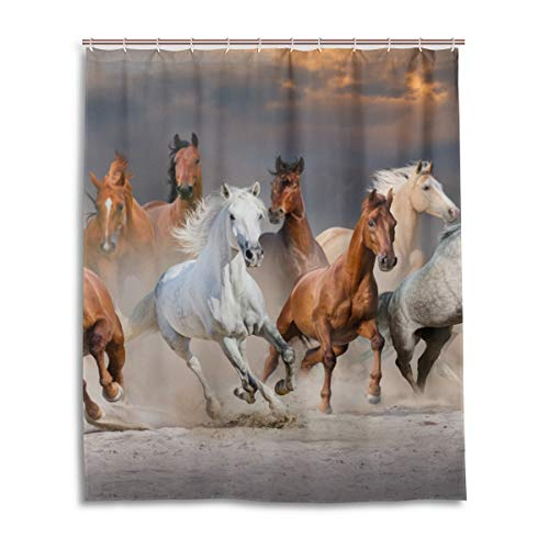 JSTEL Decor Duschvorhang Pferd dramatisch Sonnenuntergang Himmel Muster 100prozent Polyester Stoff Duschvorhang 152,4 x 182,9 cm für Home Bad Deko Duschvorhang