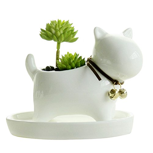 GeLive Dog Succulent Planter with Tray Saucer Fun Animal Ceramic Plant Pot Flower Vase (White)