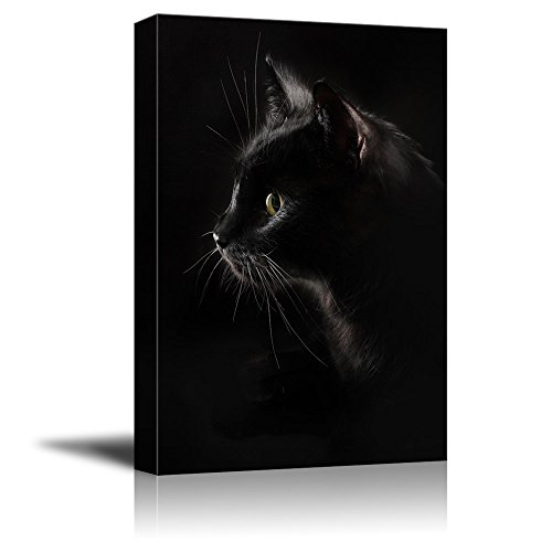 wall26 Canvas Wall Art - Black Cat with Dark Background - Giclee Print Gallery