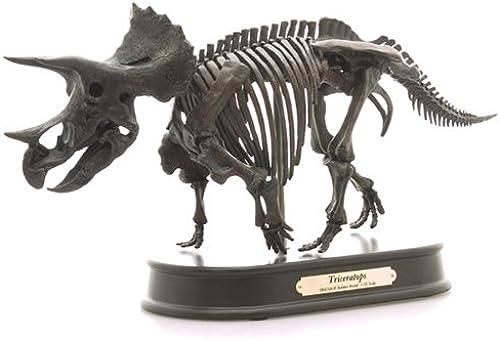 descuento Triceratops Triceratops Triceratops skeleton model (japan import)  con 60% de descuento