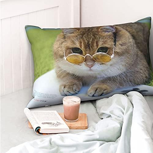VVSADEB Funda de almohada con cremallera, suave y acogedora, diseño de gafas de gato, tamaño estándar, 1 unidad