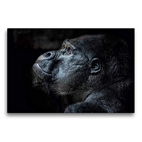 CALVENDO Premium Textil-Leinwand 75 x 50 cm Quer-Format Gorilla, Leinwanddruck von Eleonore Swierczyna