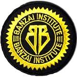 Buckaroo Banzai Institute 3in Logo PATCH