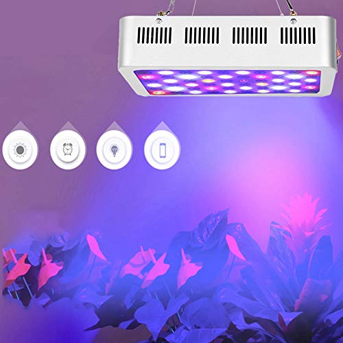 Cerlingwee Growing Light Plant Growing Light Sturdy Over-Heat Protection Flower Planting for Plant Shed Greenhouse Planting(Australian regulations)