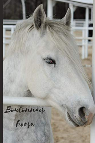 Boulonnais horse: Journal and Notebook - Composition Size (6'x9') With 120 Lined Pages, Perfect for Journal, Doodling, Sketching and Notes