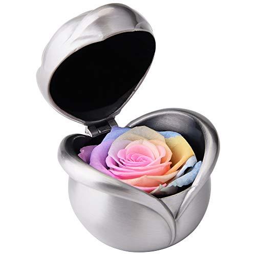 Ewige Rose, konservierte Rose,Nie verwelkte Rosen,Gehobene unsterbliche Blumen,Ewige Rosen Box,mit eleganter Geschenkbox, Geschenk zum Valentinstag Jahrestag Weihnachten Geburtstag(Regenbogen Rose)