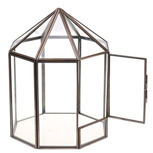 MagiDeal Haus Form Geometrisches Glas Terrarium Box Glas Sukkulente Pflanzgefäß Deko Metall Facettierte