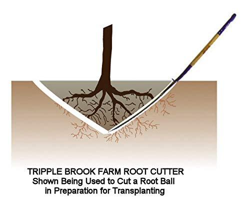 Tripple Brook Farm TBF ROOT CUTTER- tree digging spade, transplant trees/shrubs (30 inches)