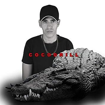 Cocodrill